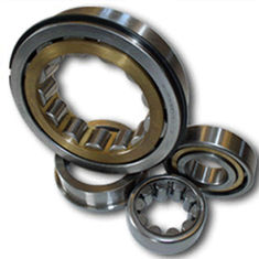 Chrome Steel Cylindrical Roller Bearing 50mm Bore With Single Row