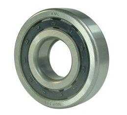 Single row cylindrical roller bearings NUP1019